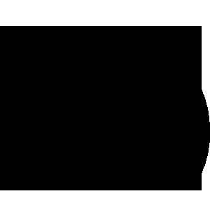icon autonomous monitoring